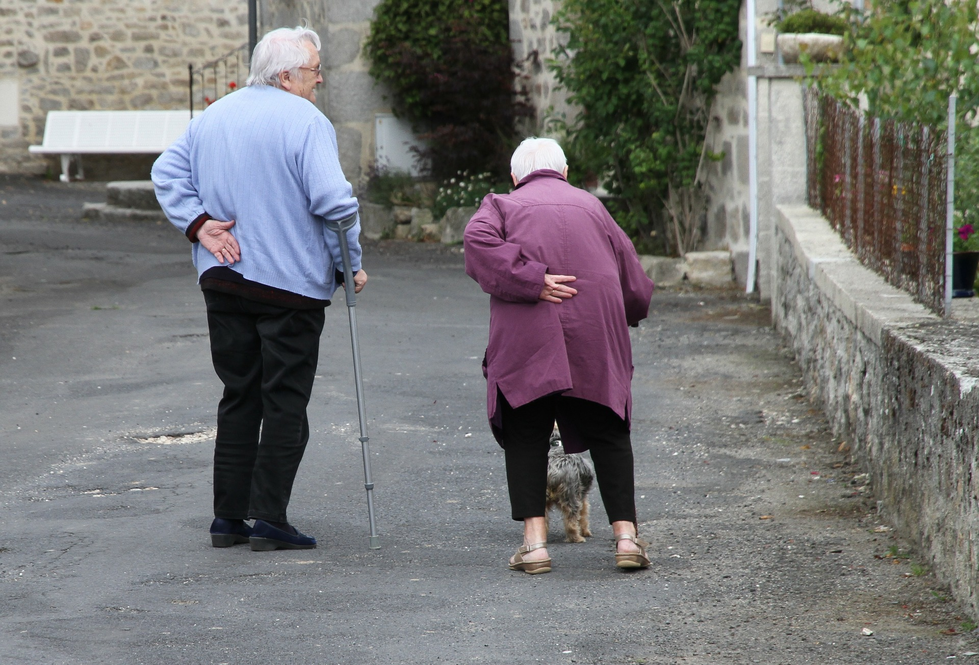 elderly man and woman walking on the road with a dog